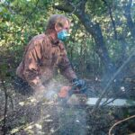 039--Invasive-plant-removal-on-walking-trail