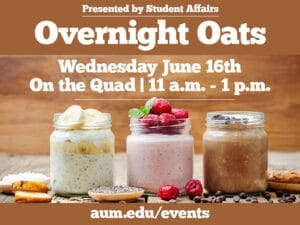Overnight Oats Graphic
