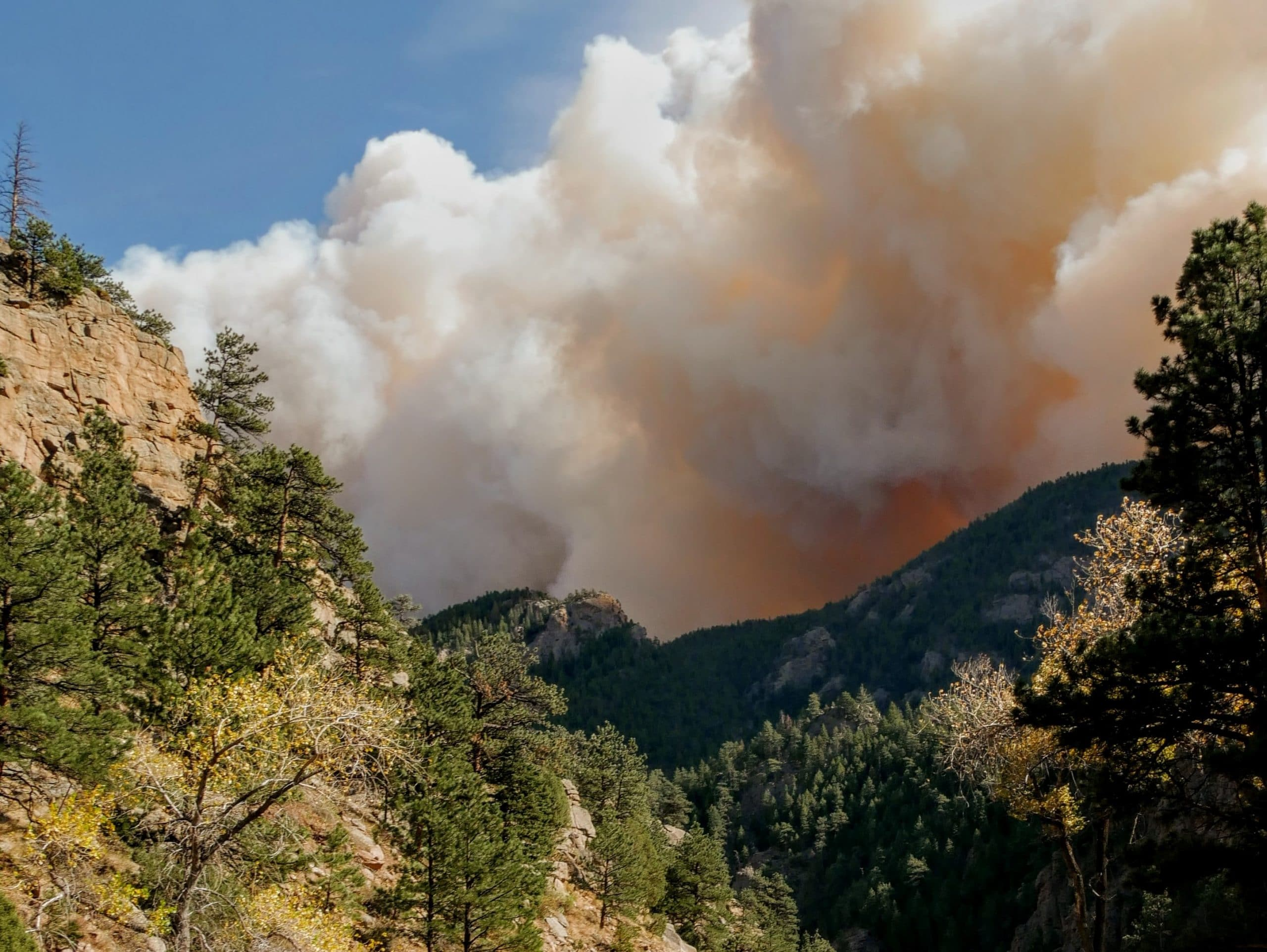 National Fish and Wildlife grant to help train AUM students in fire management